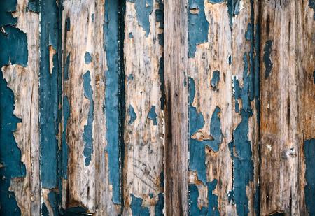 roble arbol: textura de madera vieja textura azul de tableros de madera en bruto de la cerca