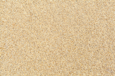 sandy brown: Seamless sand background,Sandy beach for background. Top view