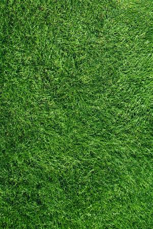 Green football Grass Field Top View Texture Close up Stockfoto