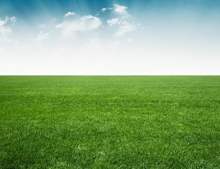 horizonte: campo verde y el cielo azul, la hierba verde bajo el cielo azul