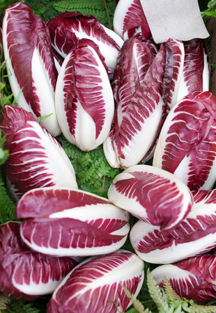 radicchio: Fresh purple Radicchio at the farmers market,chicory red salad from Italy