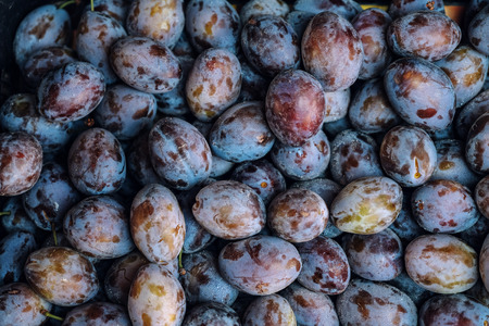 Ripe Plums harvest top view background texture
