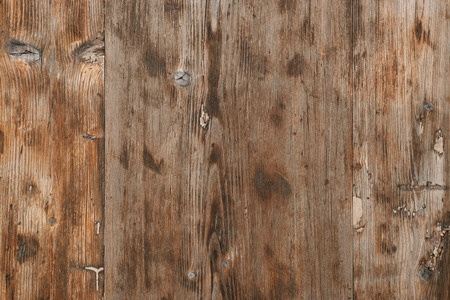 wood texture surface of pinewood hardwood background