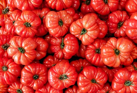 red tomatoes background Group of ribbed heirloom tomato on a market top view 版權商用圖片