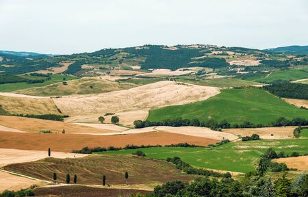 Tuscany landscape  hills, vineyard, hills and meadow, Toscana, Pienza,Italy