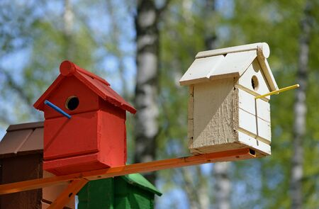 Multicolored birdhouses for the birds in the park Banque d'images