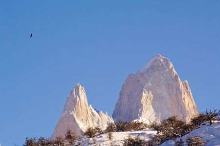 roy: Fitz Roy and Cerro Torre