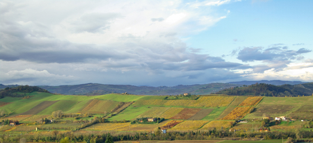 Countryside of Emilia Romagna, Italy. Hills above Monteveglio- Stock Photo