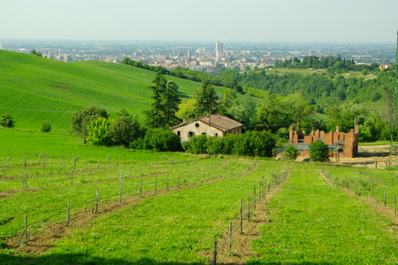 View of the hills surrounding Bologna, with the city in background.