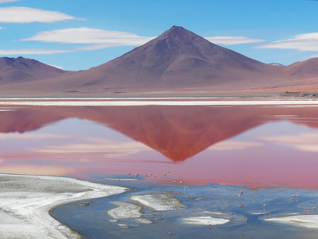 Laguna Colorada, Coloured Lagoon, takes its colour from algae and its populated by thousands of flamingos. Andean altiplano of Bolivia, South America