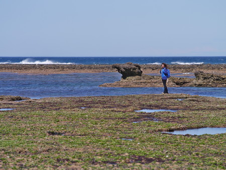 Young woman walking on the rocky coast of Punta Ninfas, home of a small colony of sea elephants. Patagonia argentina