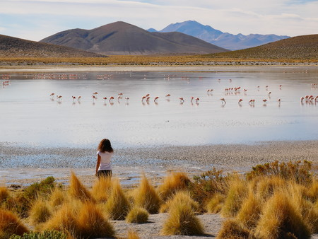 Andean altiplano of Bolivia, South America. Siloli desert is a plateau at 4500m on the sea level. Young female european tourist 写真素材