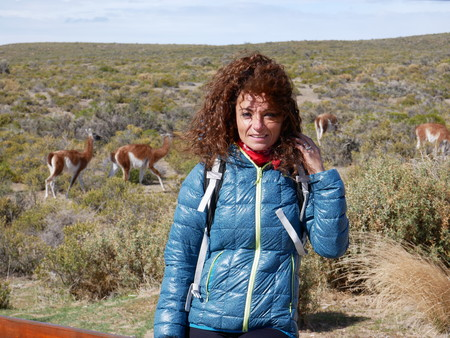 Young tourist near a group of Guanacos on a hill in the inland of Peninsula Valdez, Patagonia Argentina 報道画像