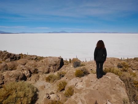 Young female tourist at the incredible salt flat of Salar de Uyuni, on the andean altiplano of Bolivia, South America, seen from the Isla Incahuasi, an island emerging from the salt 写真素材 - 117646630