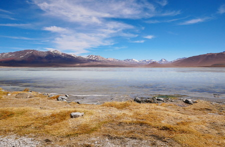 White lagoon on the Andean altiplano of Bolivia, South America 写真素材