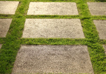 Grown lawn and slate patio, lush green landscape