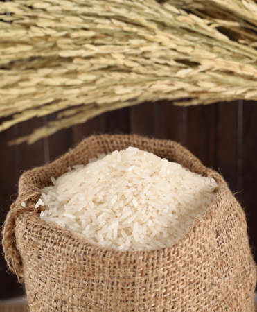 Basmati rice varieties photo