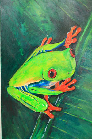 Paint frog in a plant - red-eyed tree frog photo