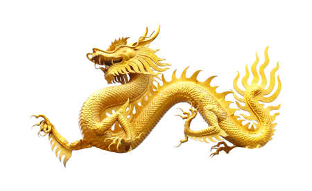 dragon chinois: Golden dragon statue ov blanc