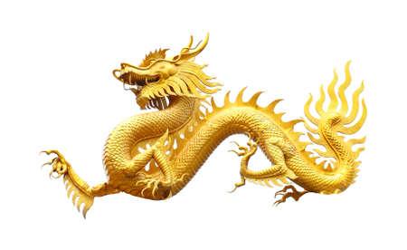 dragon chinois: Golden dragon statue ov blanc