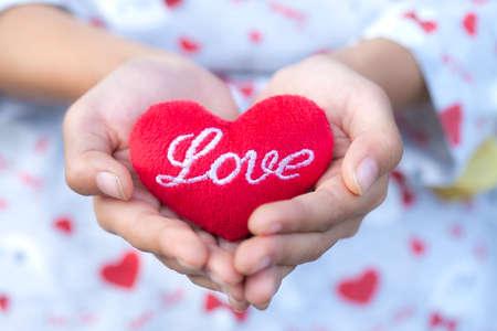 gir: Gir holding red heart pillow in hands,Red heart.