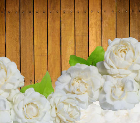 considerable: jasmine flowers