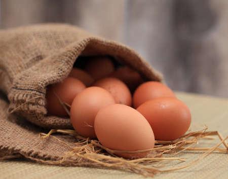 sackcloth: Eggs on sackcloth. Stock Photo