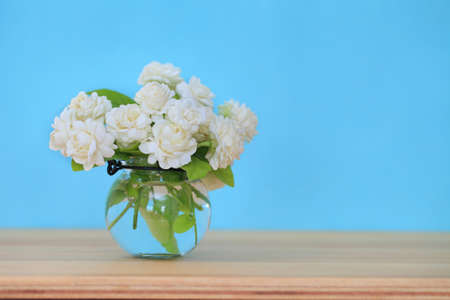 Beautiful jasmine flower in the pot on green blur background.Copy space background.