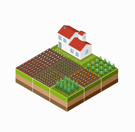 Isometric landscape of the countryside with the farm, the crop, the beds. Vectores