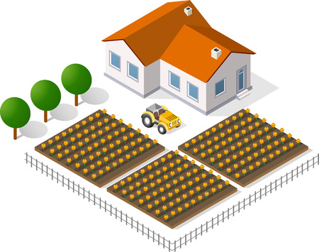 world agricultural: Houses and gardens in a rural perspective view Illustration