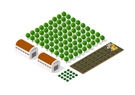 Rural isometric natural ecological farm with the beds and structures
