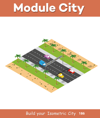 Natural landscape isometric forest with trees and plants, expressway with cars.