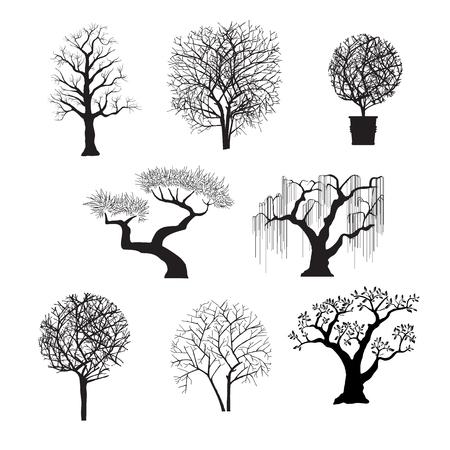 tree silhouettes for design Vettoriali