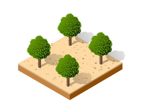 Isometric 3D park Vector illustration.