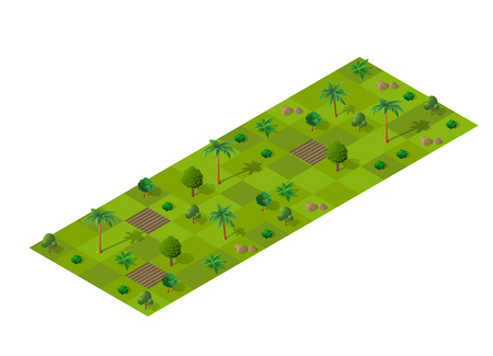 Isometric summery forest with trees, fir and bushes. Summer time of the year. Conceptual vector illustration. Illustration