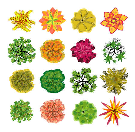 Trees top view. Easy to use in your landscape design projects Ilustración de vector