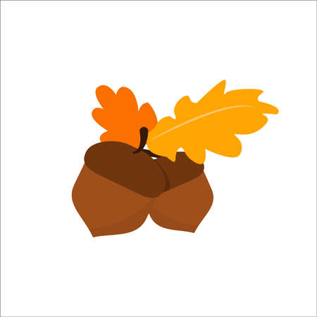 Autumn oak leaves with acorns. Design for seasons greeting cards or gift wrap paper. Vector illustration