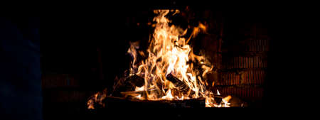 outdoor fireplace: the burning fire in the fireplace on a winter nature
