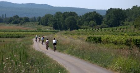 Bike riding in France Standard-Bild