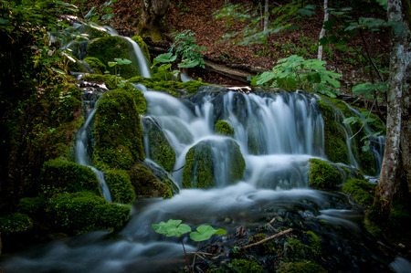 A stream falling in forest  in Piltvica National Park, Croatia