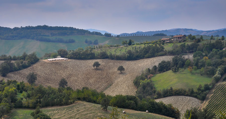 Plowed fields in autumn in Italy  The field is surrounded with trees and two trees are located in the field