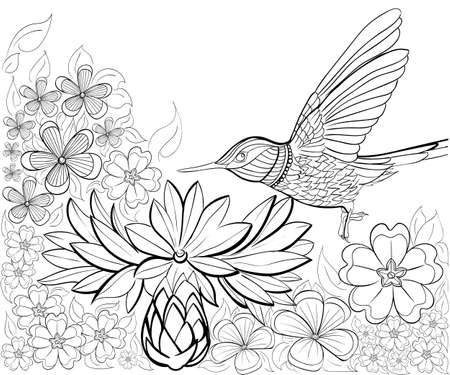 Hand drawn ink pattern. Coloring book for adult.