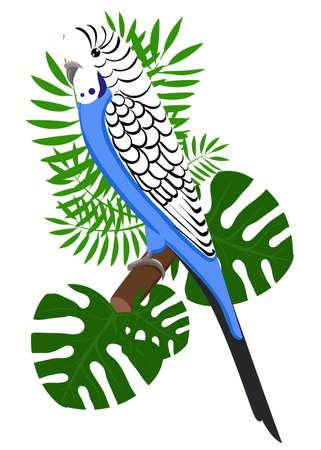 birds of paradise: Parrots Cartoon Vector Illustration. Parrot set Exotic birds bird of paradise