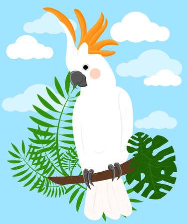 exotic birds: Parrots Cartoon Vector Illustration. Parrot set Exotic birds bird of paradise