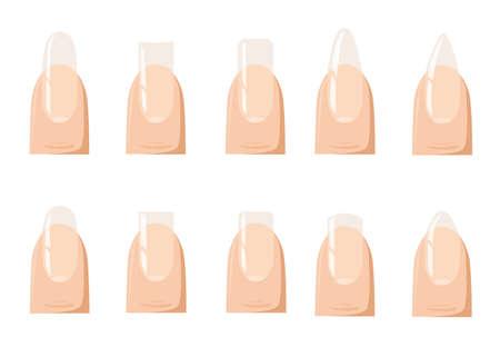 brittle: Types of fashion Different nail shapes - Fingernails fashion illustration.