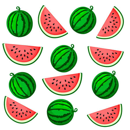 Juicy watermelon summer fruit and a slice of watermelon. Vector illustration on white background. Elements for design. Melon print. Summer market water fruit.