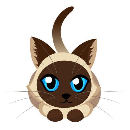 シャム猫ふわふわむら白地に青い目を持つ素敵な子猫ペット猫犬かわいいペット動物設定ベクトル イラスト Web サイト ページとモバイル アプリ デ  イラスト・ベクター素材