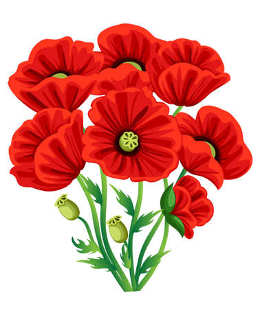 빨간 양 귀 비 꽃 흰색 배경에 고립입니다. 벡터 빨간 낭만적 인 양 귀 비 꽃과 잔디입니다. 빨간 양귀비. 빨간 꽃. 장식 웹 사이트 페이지 및 모바일 애