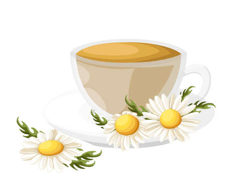 camomile tea: Bouquet realistic daisy, camomile flowers on white background. Vector illustration card camomile tea medical Web site page and mobile app design vector illustration. Stock Photo