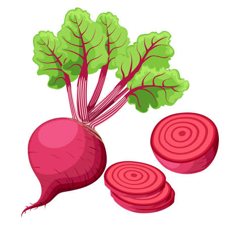 Vector beets isolated on background. Red beetroot whole, cut, sliced. Set of fresh beets in different forms flat icon design. Web site page and mobile app design Vector illustration Illusztráció
